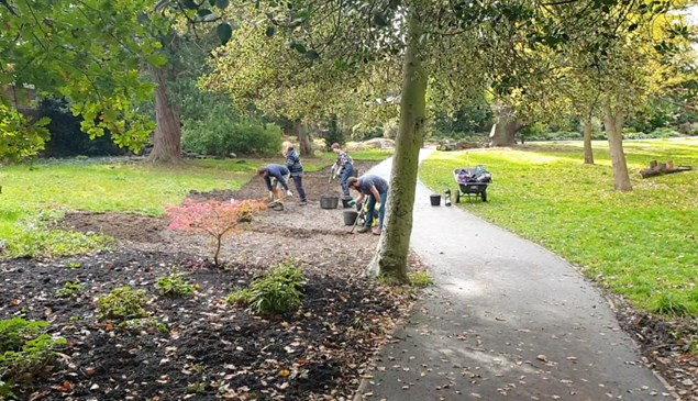 gardeners digging in the park